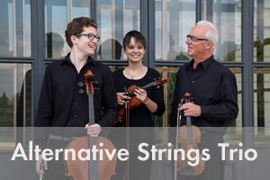 Alternative Strings Trio